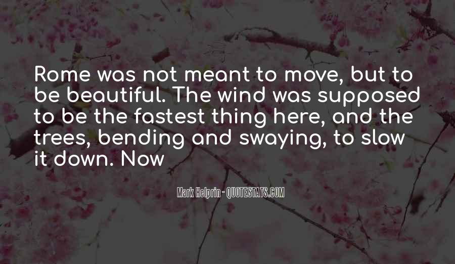 Meant To Be Here Quotes #796447