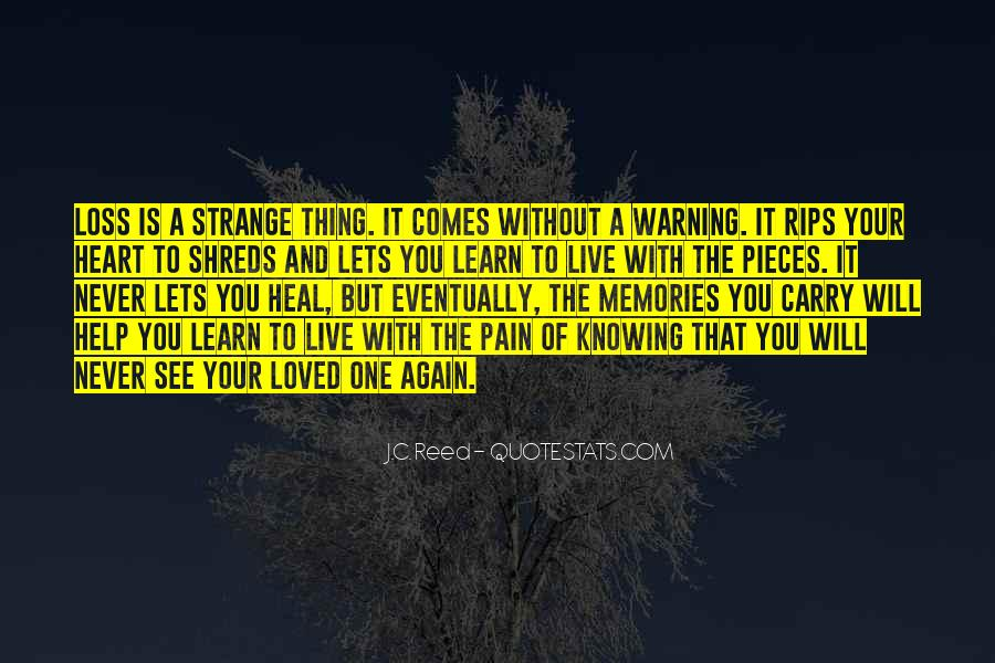 Memories And Pain Quotes #1868143