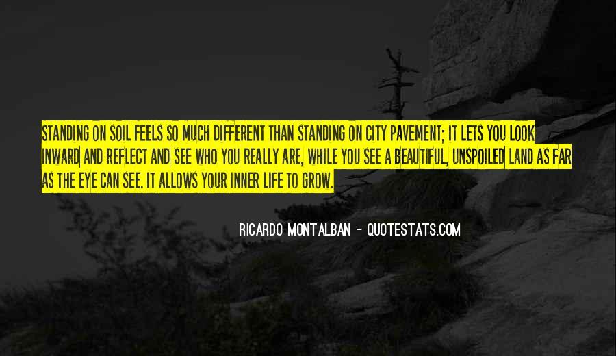 Montalban Quotes #594527