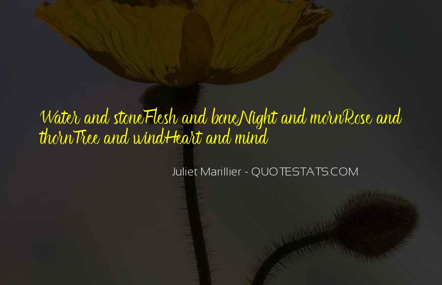 Moominland Midwinter Quotes #946623