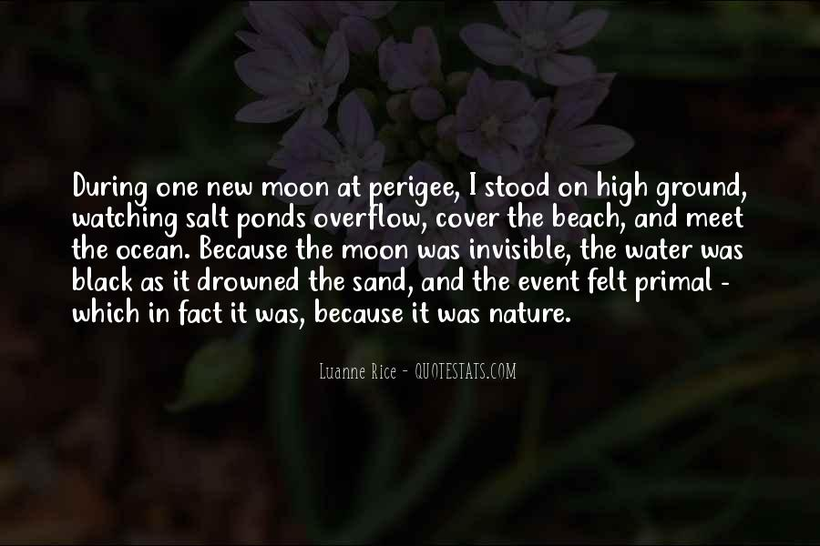 Moon Watching Quotes #192471