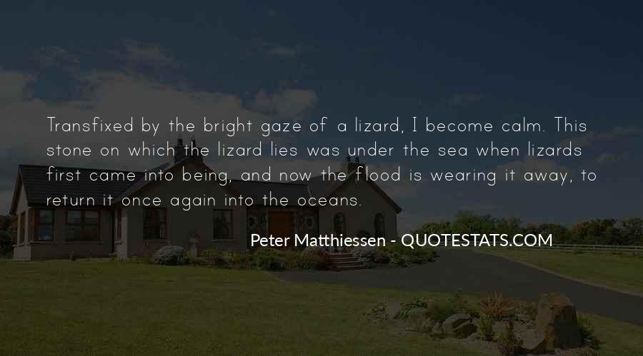 Mountains And Oceans Quotes #1178861