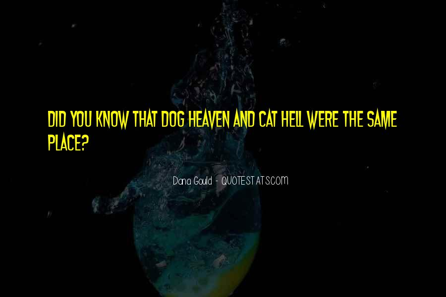 My Dog Is In Heaven Quotes #653168
