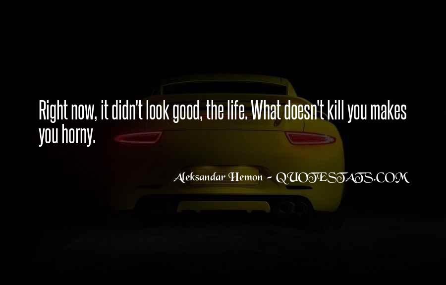 My Life Is Good Right Now Quotes #112471