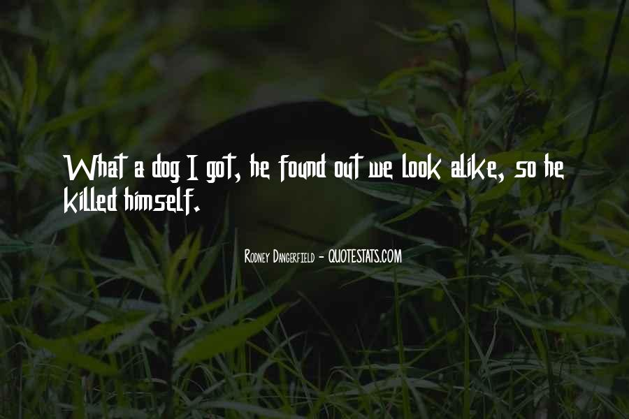 My Look Alike Quotes #490731