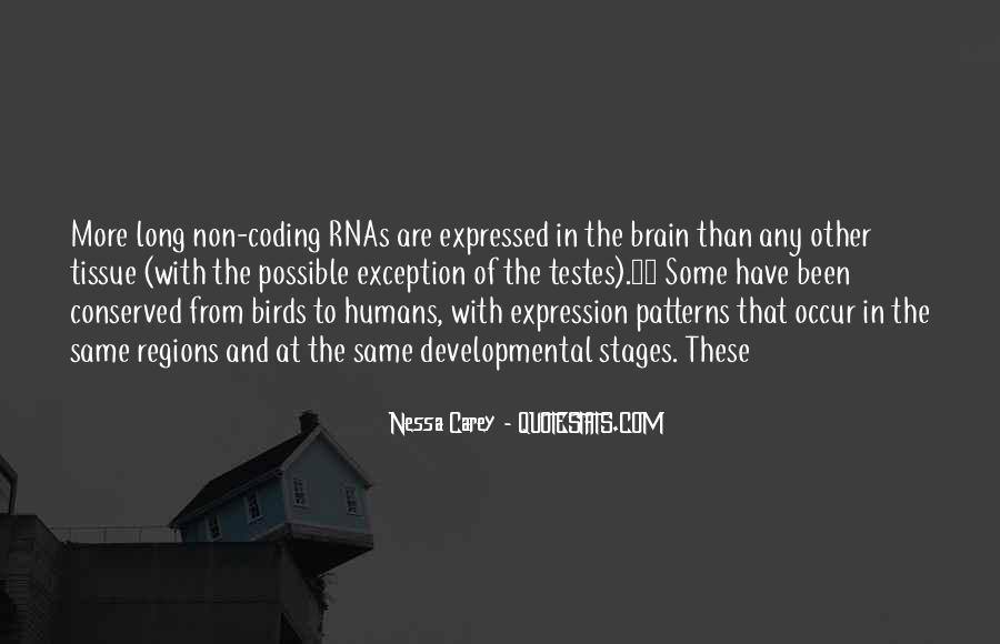 Nessa's Quotes #437419