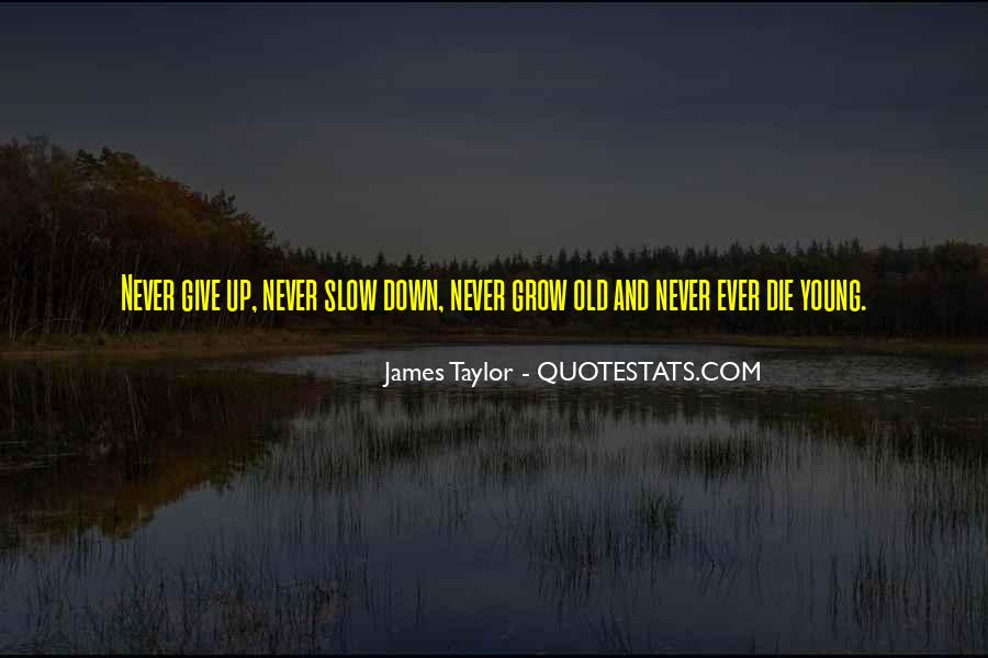 Never Ever Give Up Quotes #1789529