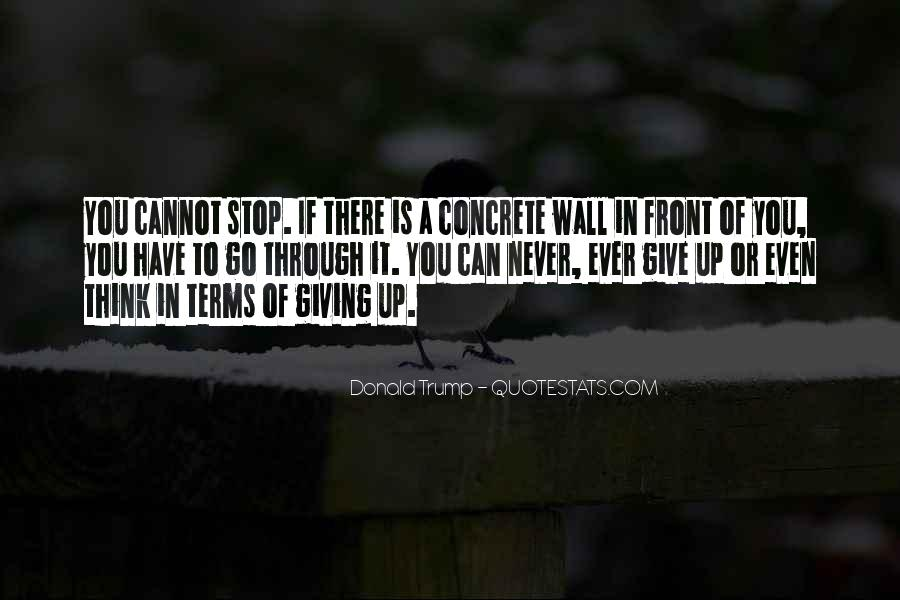 Never Ever Give Up Quotes #212300