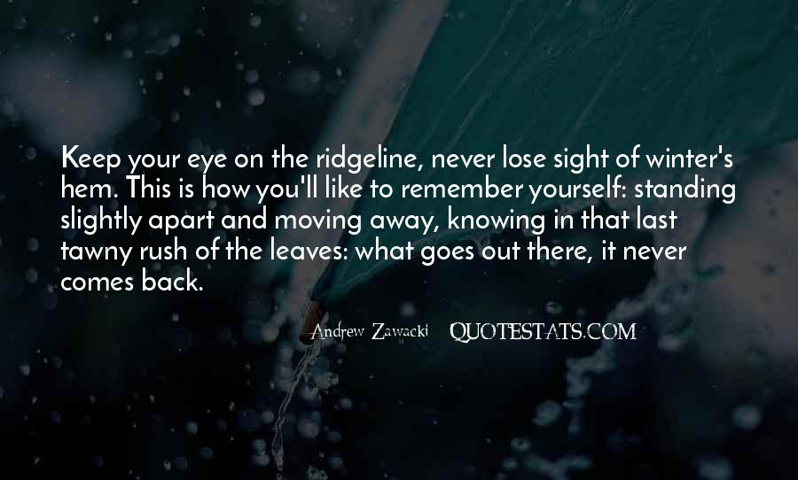 Never Lose Sight Of Who You Are Quotes #565388
