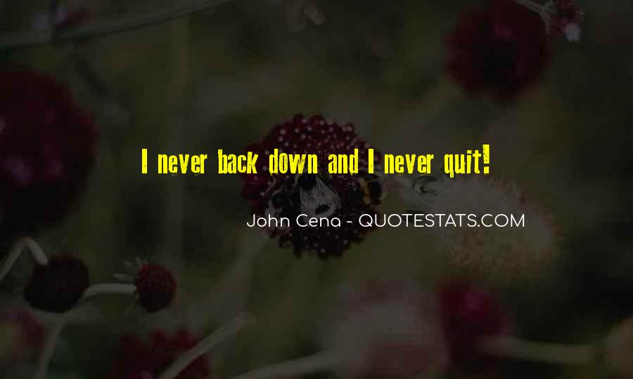 Never Never Quit Quotes #91158