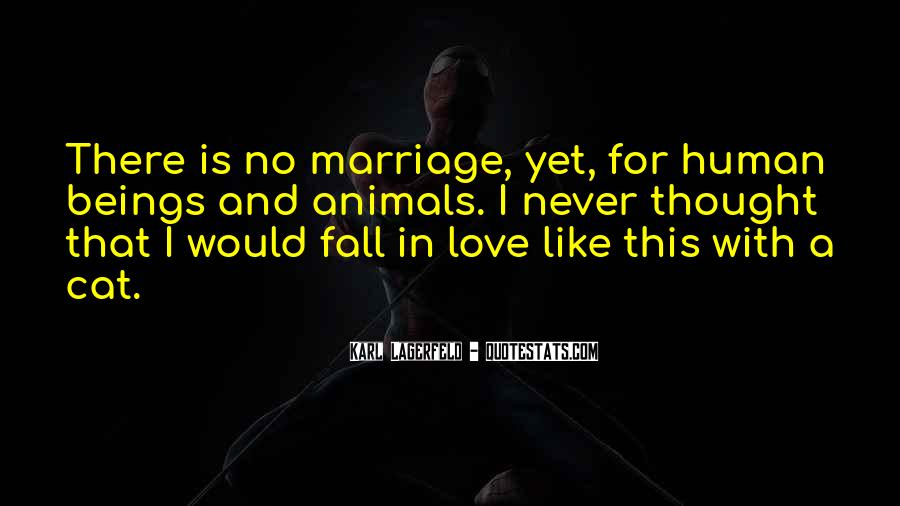 Never Want To Fall In Love Quotes #285209