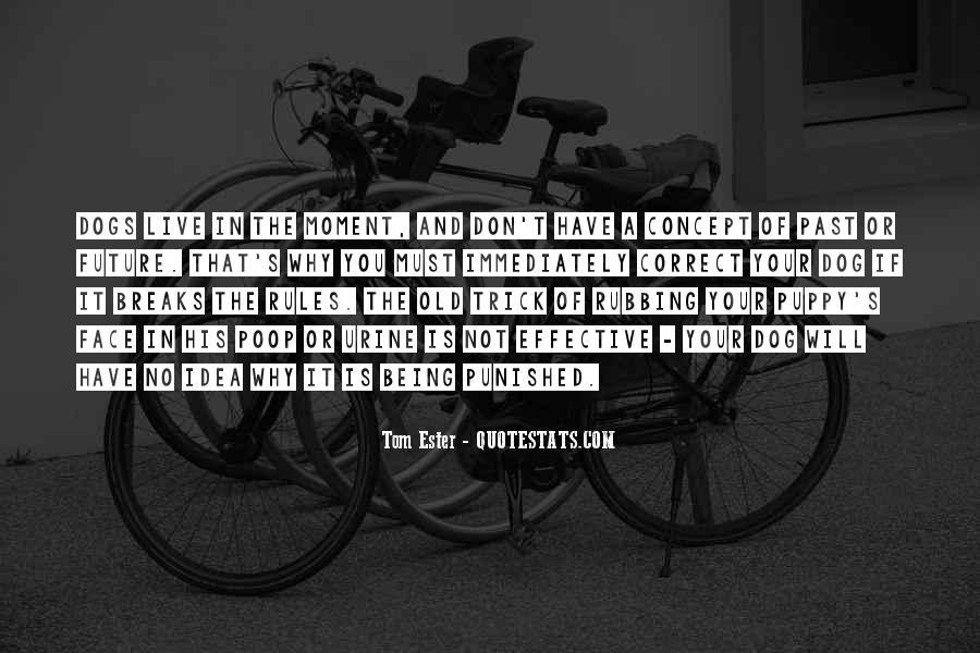 No Breaks Quotes #1259799