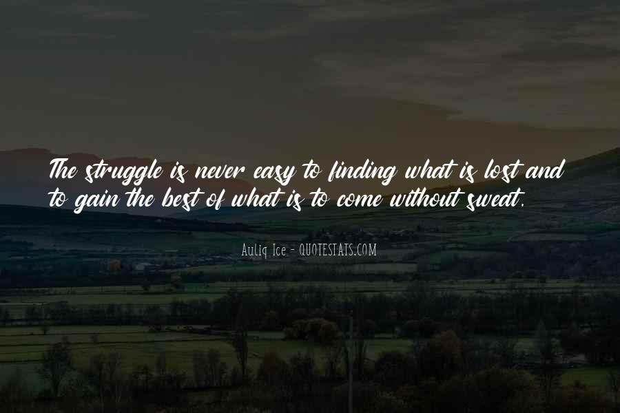 No Easy Way To Success Quotes #142057