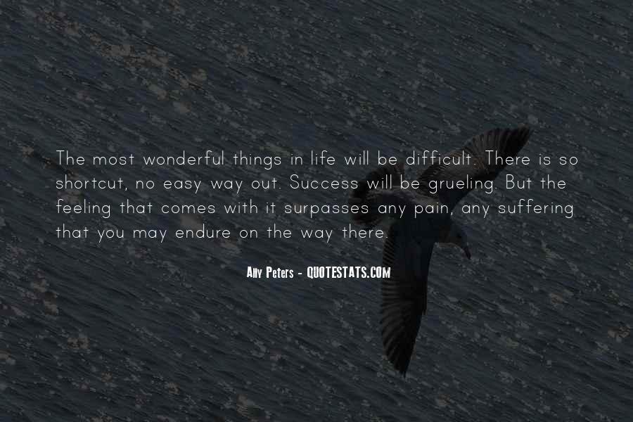 No Easy Way To Success Quotes #305547