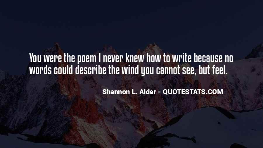 No Words Describe Quotes #231130