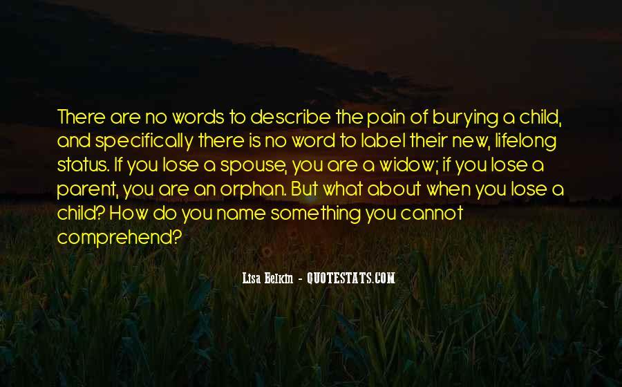 No Words Describe Quotes #307519
