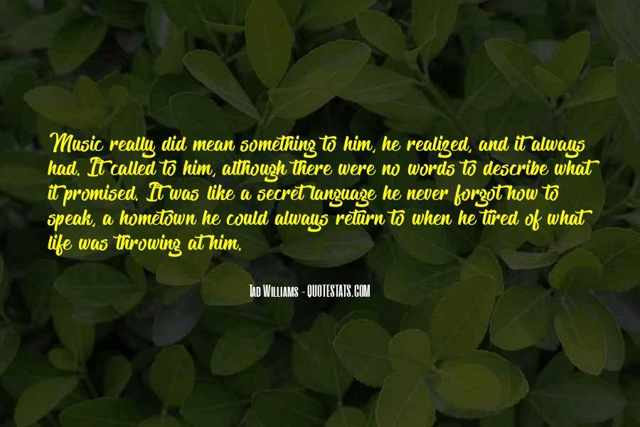No Words Describe Quotes #589395