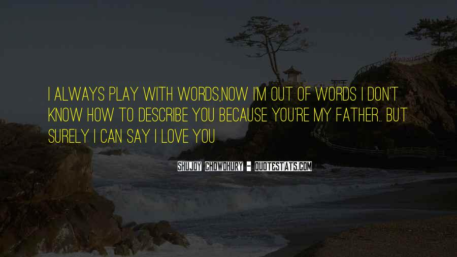 No Words To Say How Much I Love You Quotes #146701