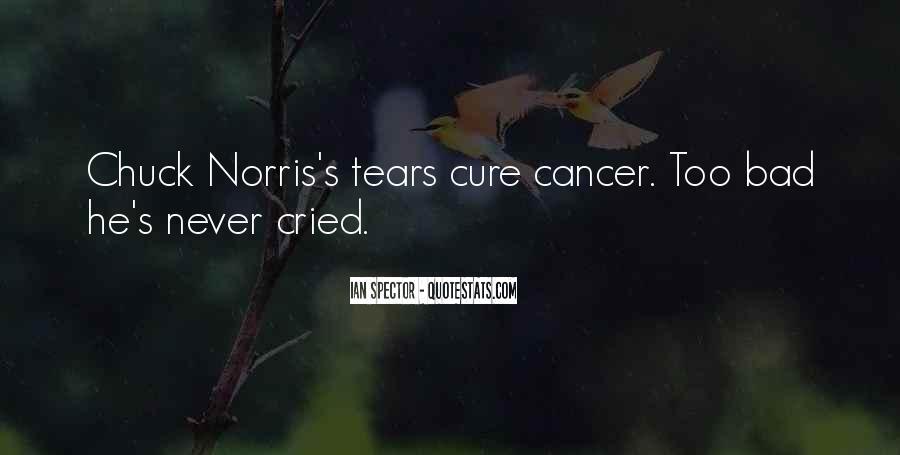 Norris Quotes #314434