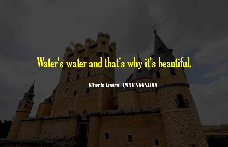 Not Seeing Beauty Quotes #734996