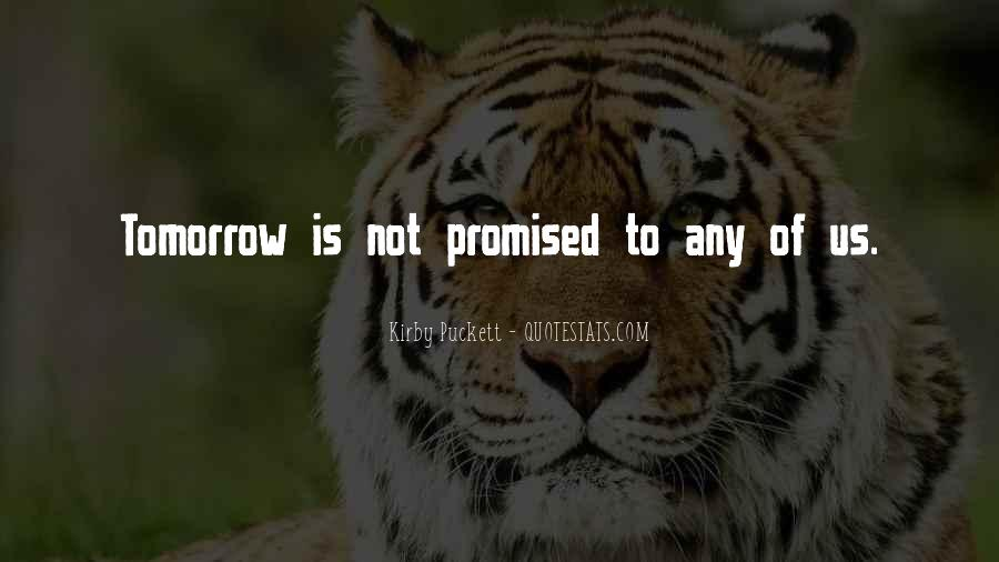 Nothing Is Promised Tomorrow Quotes #1417268