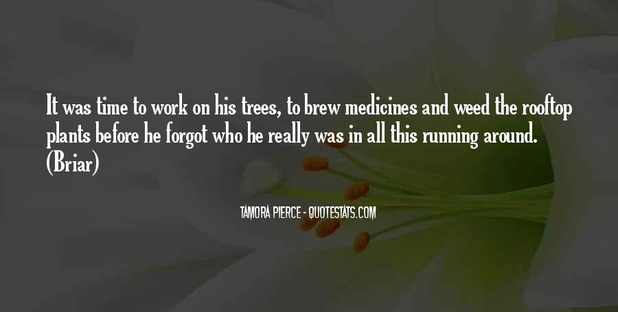 Quotes About Brew #220987
