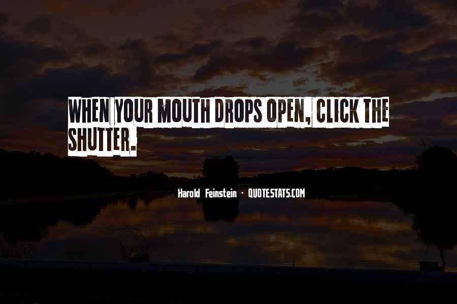 Omar Haim Quotes #331690