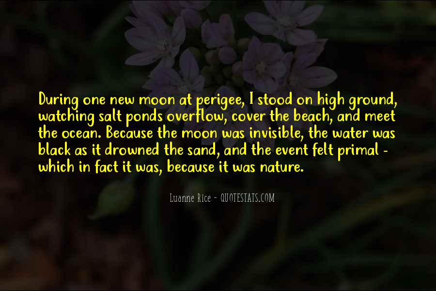 On The Moon Quotes #192471