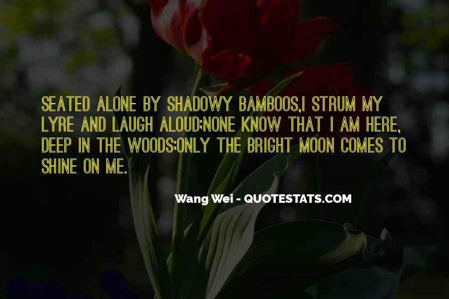 On The Moon Quotes #56357