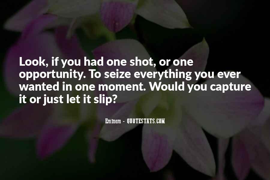One Shot Opportunity Quotes #182366