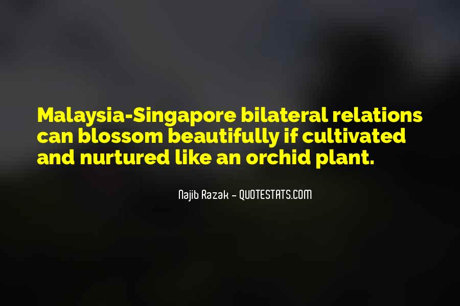 Orchid Blossom Quotes #114671