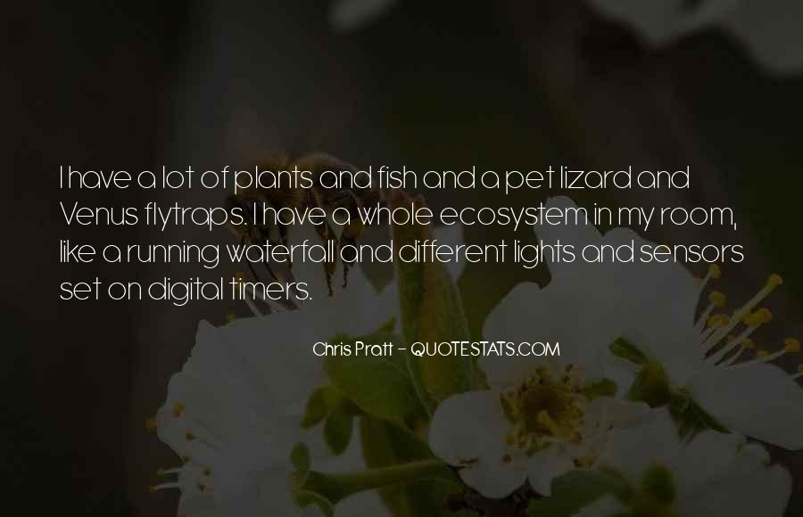 Othello Remorse Quotes #1682218