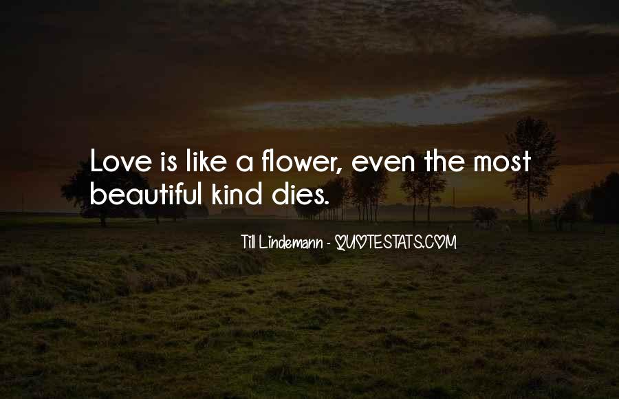 Our Love Dies Quotes #147062