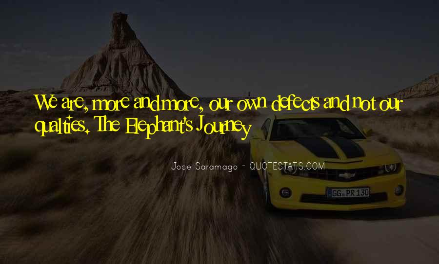 Our Own Journey Quotes #1400325