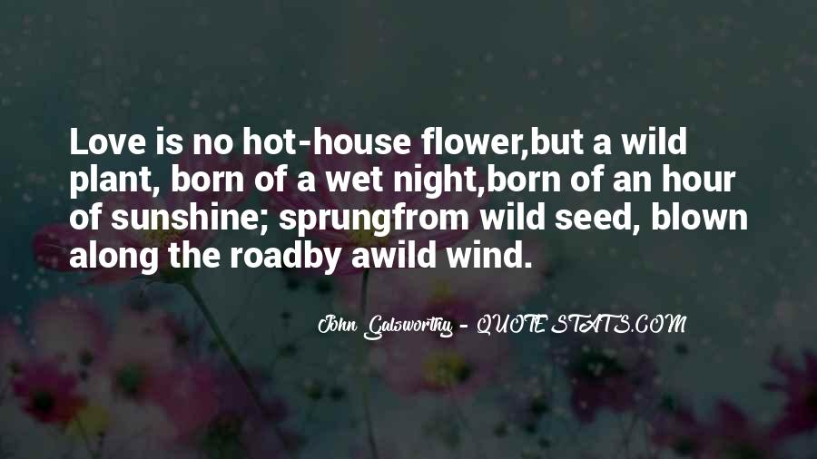 Quotes About Blown #194188