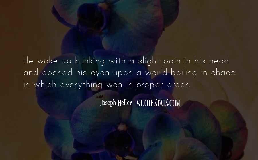 Pain In His Eyes Quotes #1405445