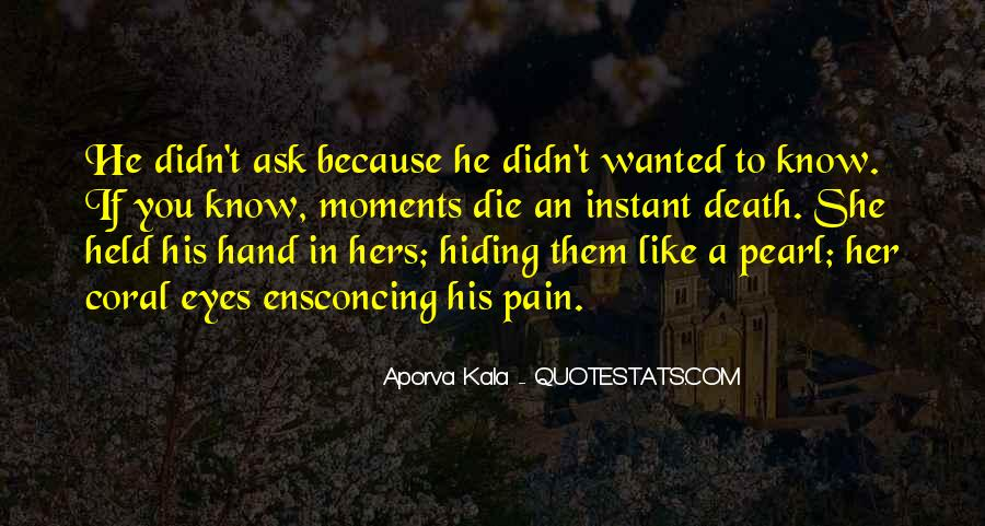 Pain In His Eyes Quotes #310464