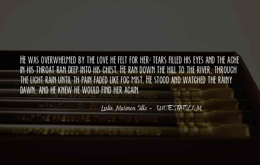 Pain In His Eyes Quotes #47855