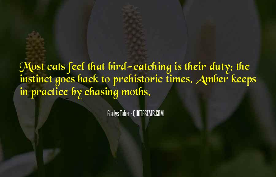 Past Catching Up Quotes #34