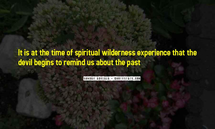 Past Life Experience Quotes #1817661