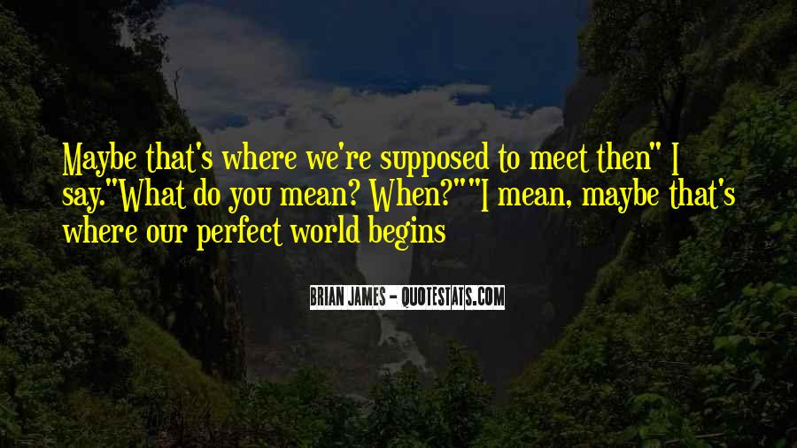 Perfect World Brian James Quotes #943434