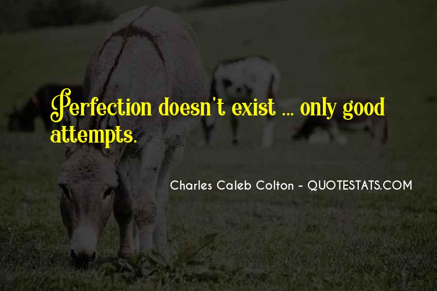 Perfection Doesn Exist Quotes #54390