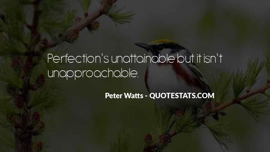 Perfection Unattainable Quotes #675322