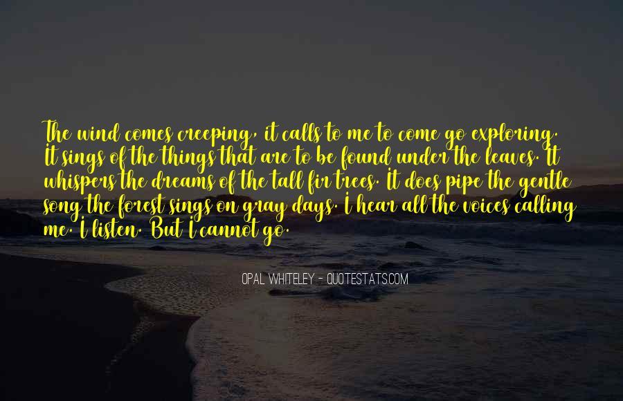 Pipe Dream Quotes #1849216