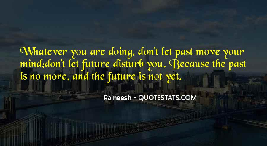 Please Don Disturb Quotes #1555057