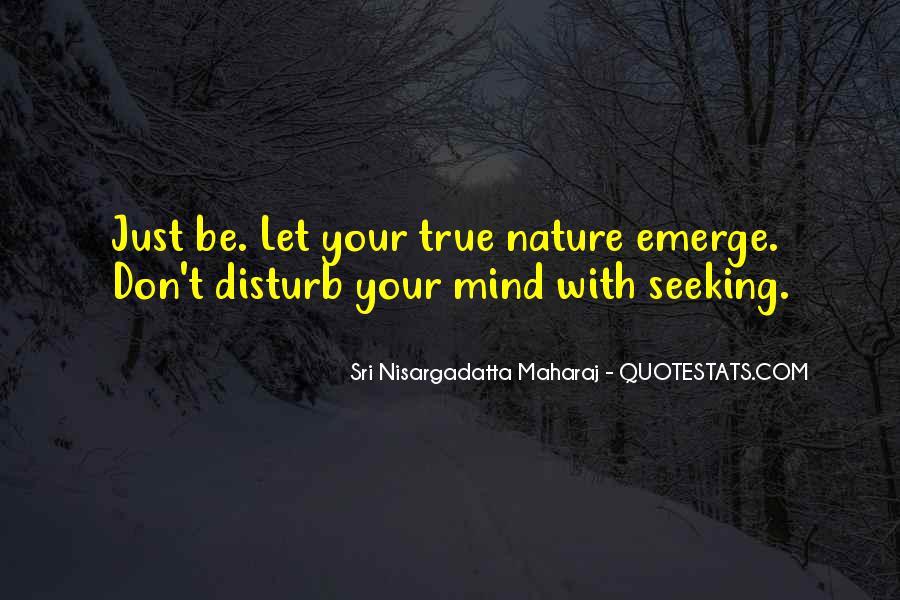 Please Don Disturb Quotes #1575943