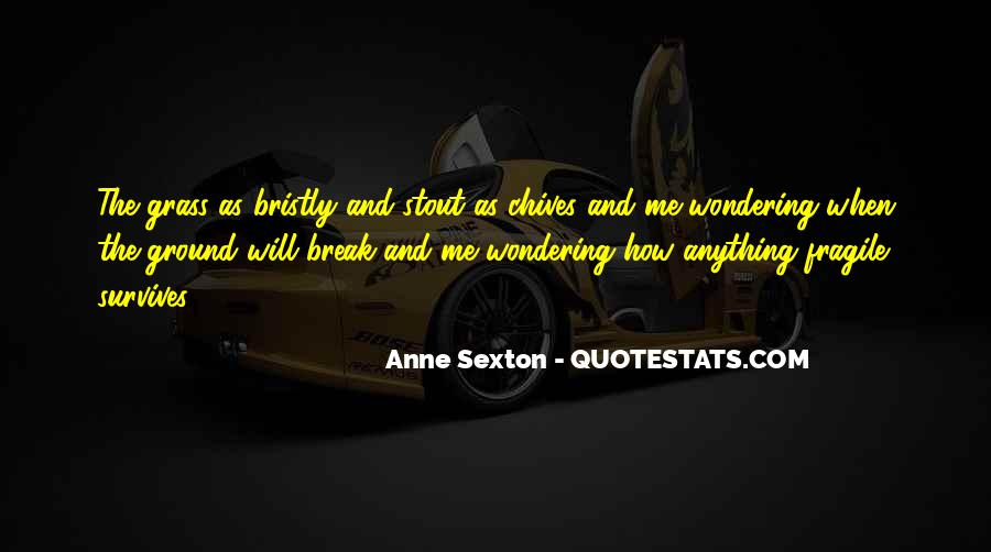 Quotes About Anne Sexton #240229