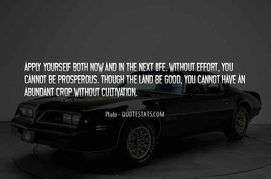 Prosperous Life Quotes #324136