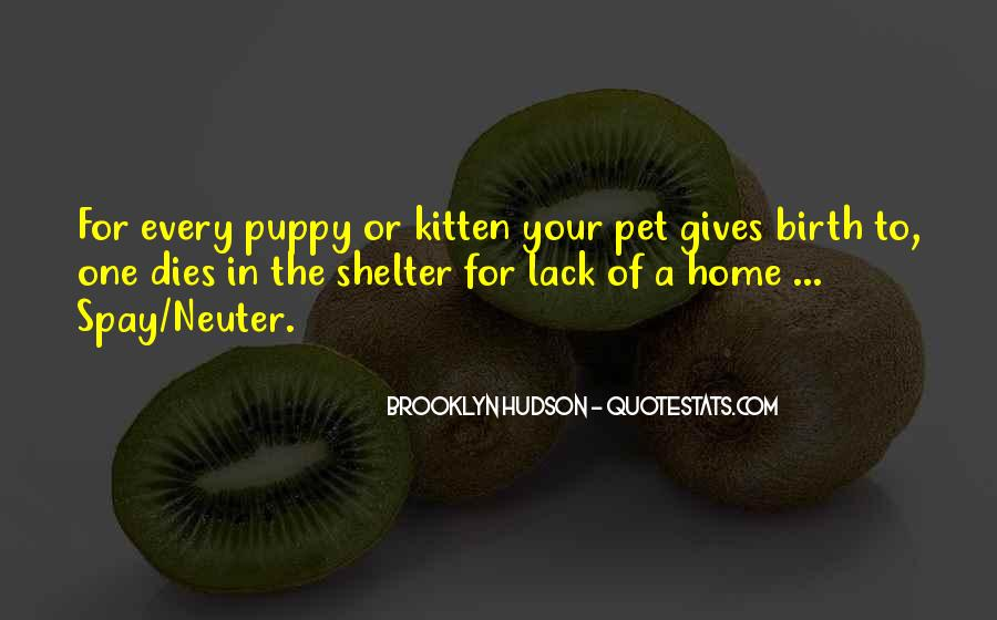 Puppy And Kitten Quotes #951291