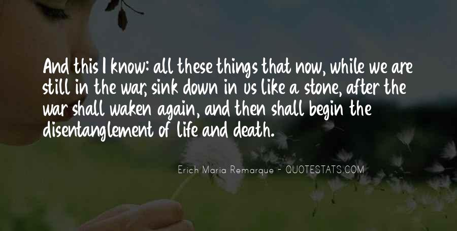 Quiet On The Western Front Quotes #1276517